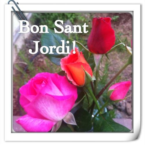 Roses collides aquest matí!